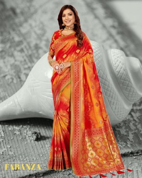 Indian Traditional Attire
